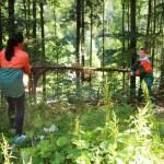 Wir  haben den Wald gelichtet....